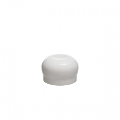 PMC28-Mushroom Cap